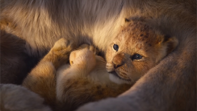 Le Roi Lion 2019 Film D Animation Disney