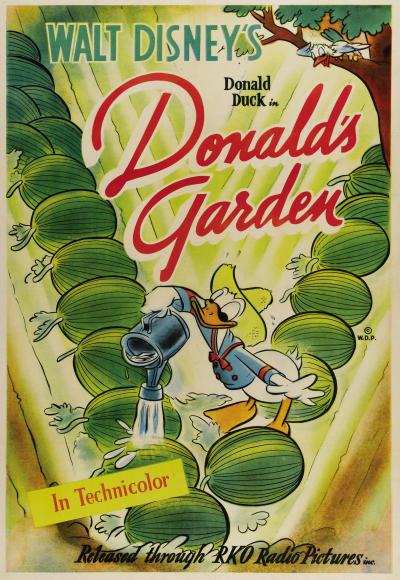 Le jardin de donald chronique disney for Jardin walt disney