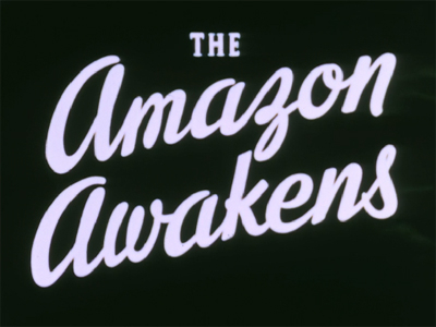The Amazon Awakens