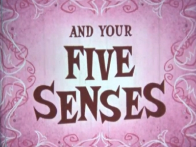 You... and Your Five Senses