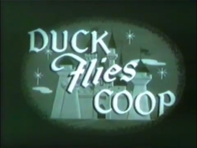 Duck Flies Coop
