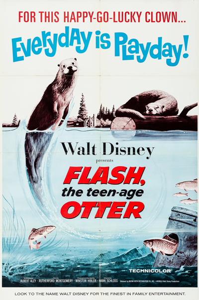 Flash, the Teen-Age Otter