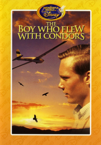 Jaquette The Boy who Flew with Condors