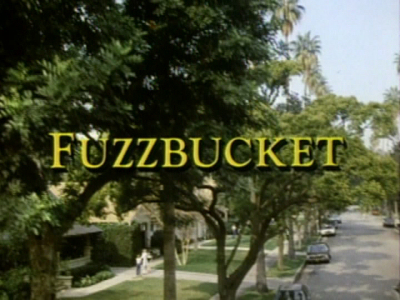 Fuzzbucket, L'Ami Invisible